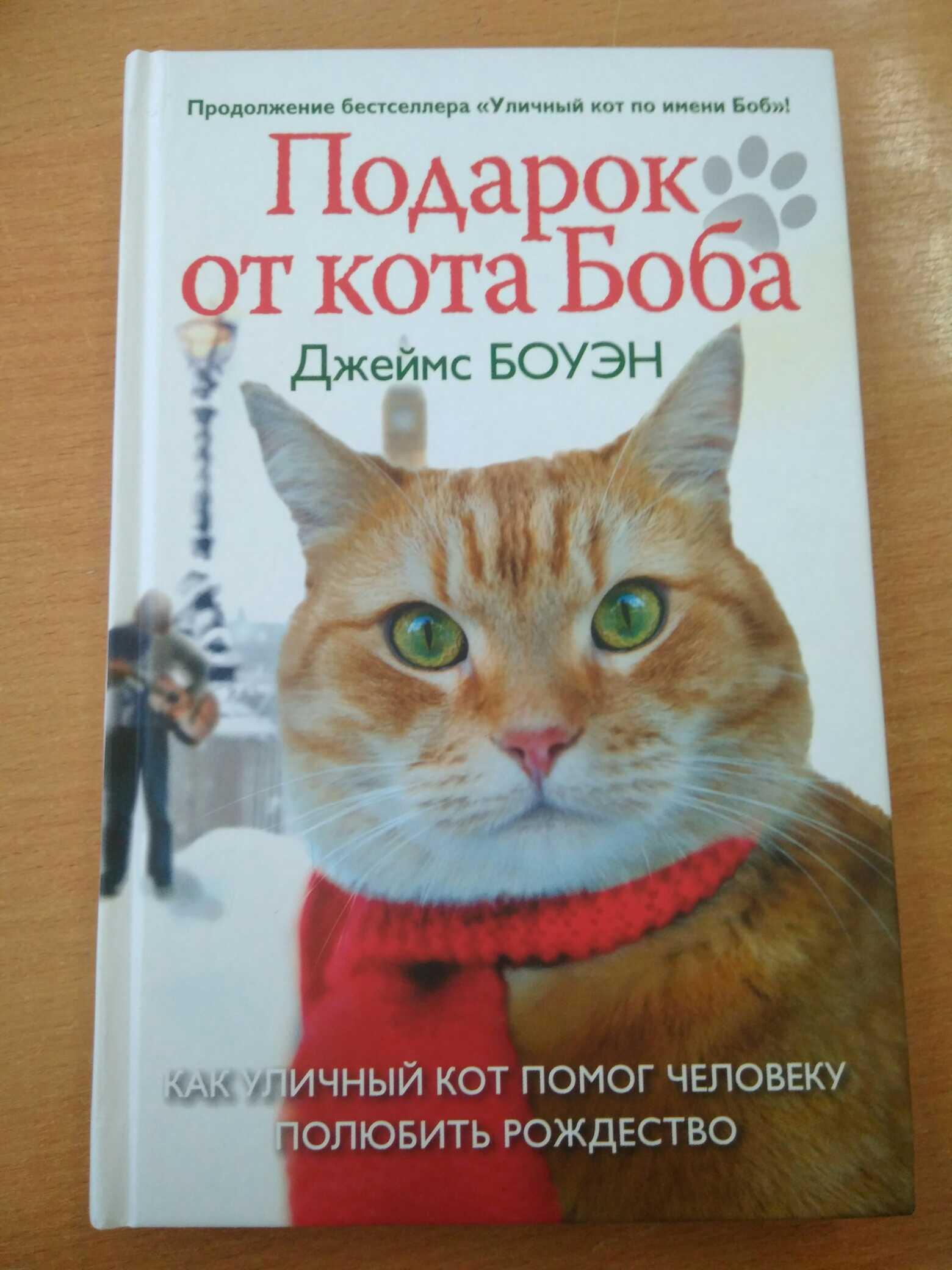 Подарок от кота боба на английском